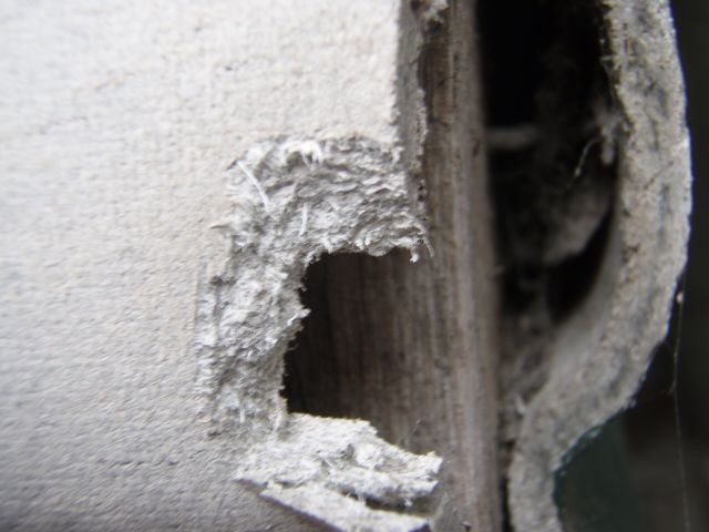 Asbestos Exposure Symptoms
